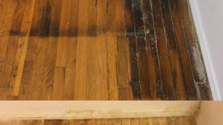 How To Clean Water Stains From Wood Floors Flooringmost Com